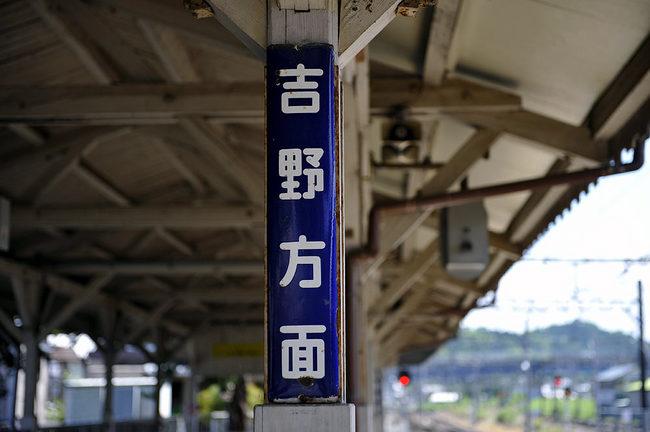 吉野200807.jpg