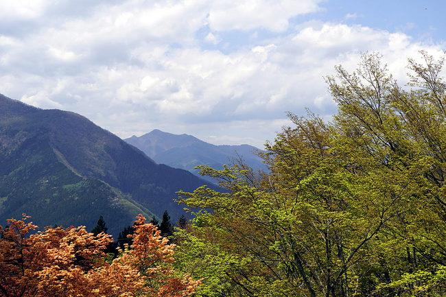 山♪.jpg