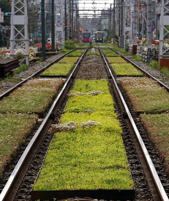 緑化軌道.jpg