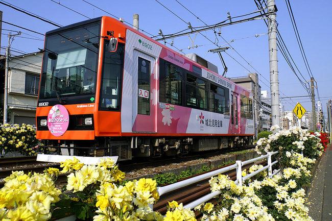 薔薇桜w.jpg