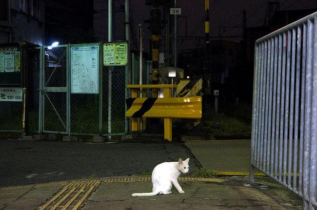 西天下茶屋20120914.jpg